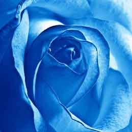 Blue-Wedding-Garters-Bridal-Garters-Prom-Garters-Custom-Wedding-Garter-Linda-Joyce-Couture