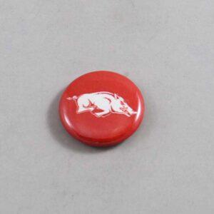 NCAA Arkansas Razorbacks Button 12