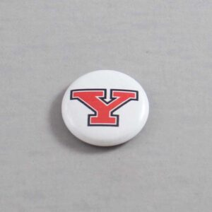 NCAA Youngstown State Penguins Button 06